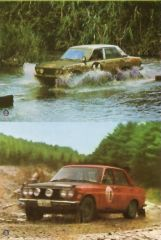 Bluebird Rally Cars
