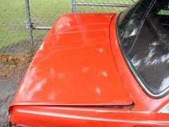 donko's trunk