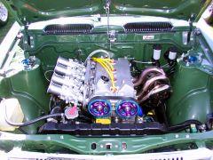 Green Corolla (2 of 2)