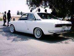 Bluebird Coupe