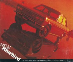 Bluebird Dealership Brochure