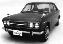 Bluebird Coupe Buyer's Guide
