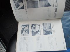 Bluebird_DX_in_Japan_52_