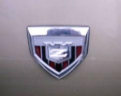 JDM Z hood badge