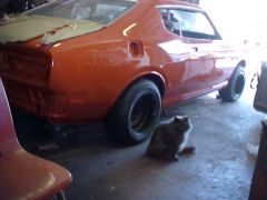 Datsun 918 orange single stage quickie for hymie.610