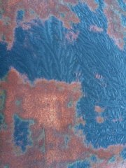 01202017 cooper frost (1).JPG