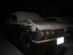 12092016 snow place like home (6).JPG
