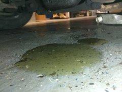 05302017 bruiser steering box leak (1).JPG