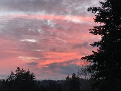 11292018 sunset.JPG