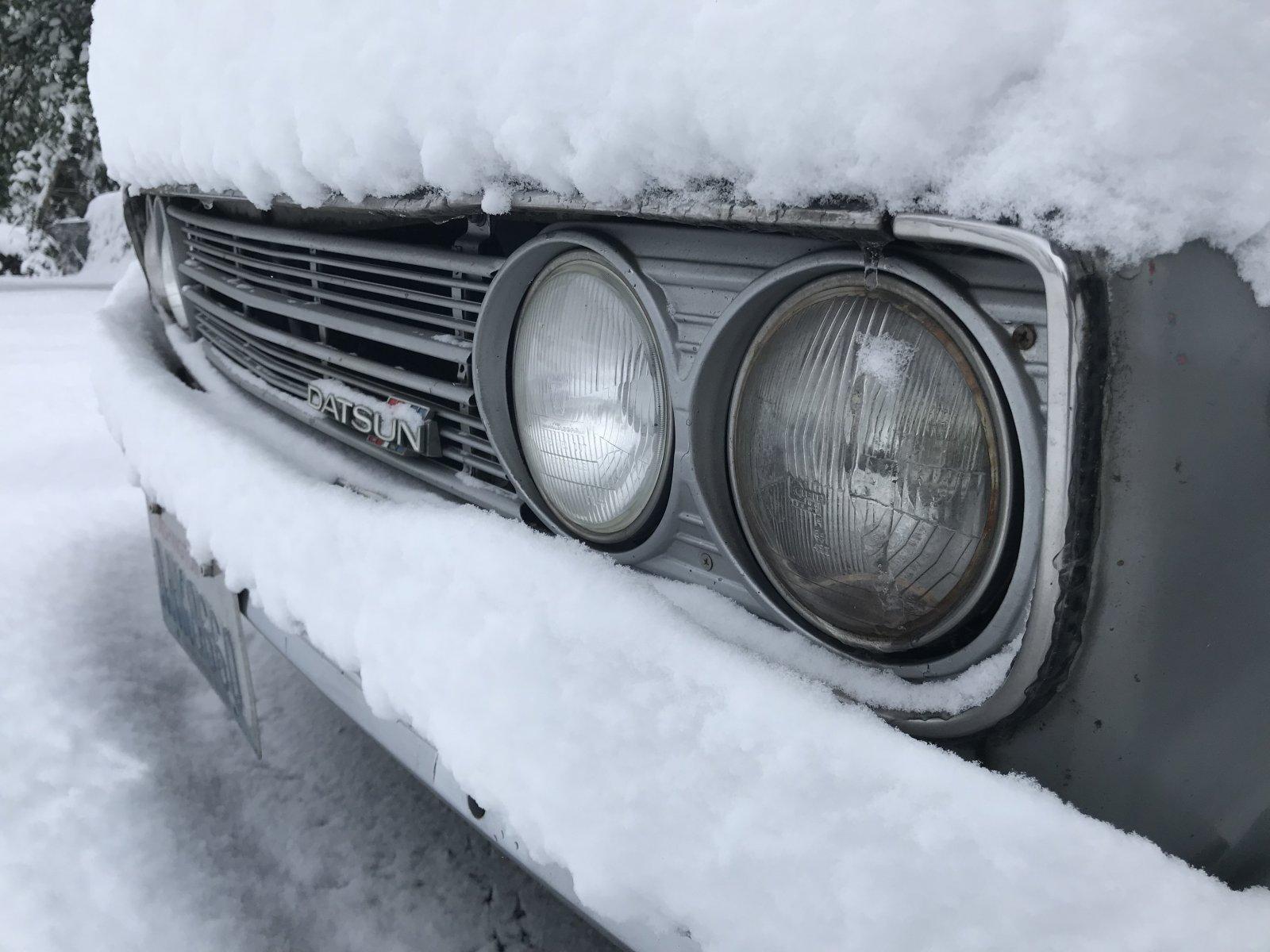 02042019 cooper snow (5).JPG