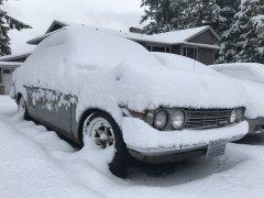 02042019 cooper snow (2).JPG