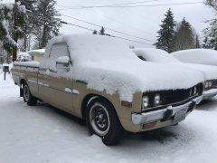 02042019 bruiser snow (2).JPG