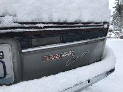 02042019 cooper snow (7).JPG