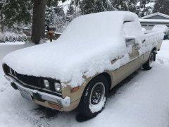 02042019 bruiser snow (3).JPG