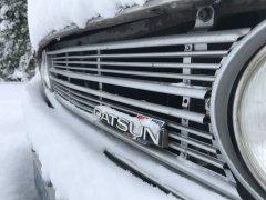 02042019 cooper snow (6).JPG