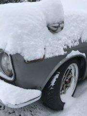 02042019 cooper snow (4).JPG